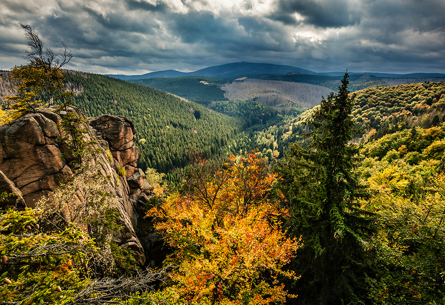 Harzer Brocken im Herbst.