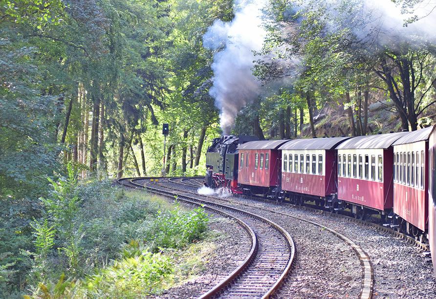 Fahrt mit einer historischen Schmalspurbahn.