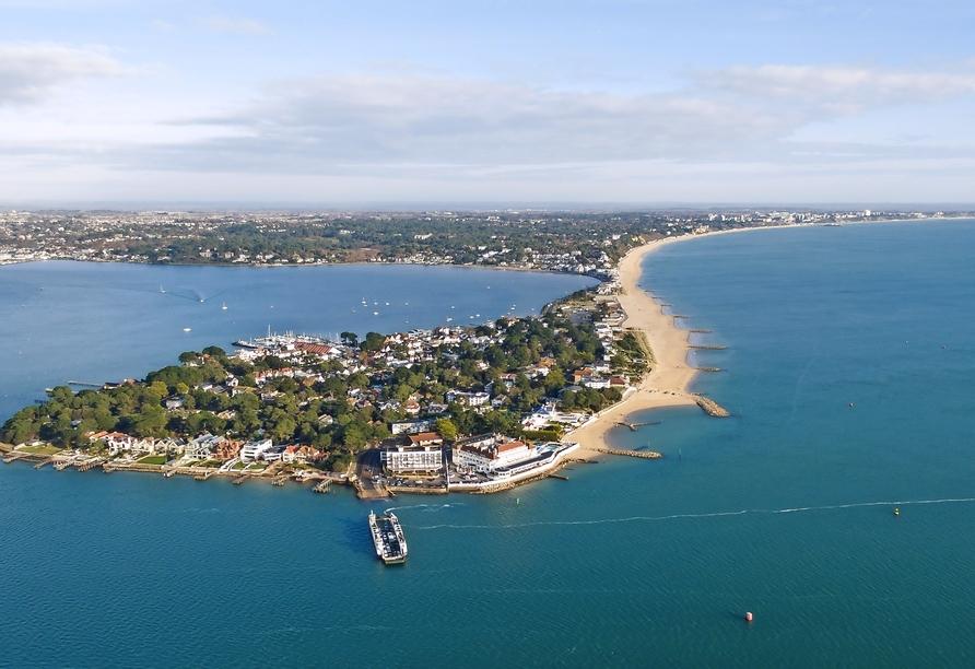 MS Amera, Poole