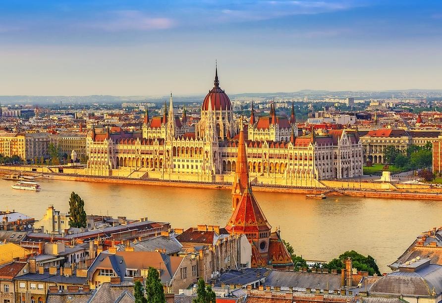 MS Alena, Budapest