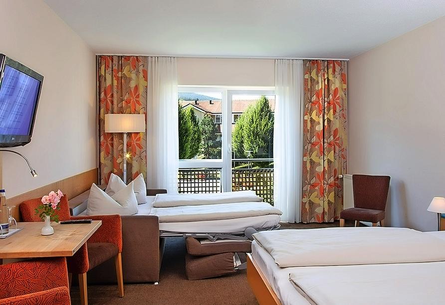 Beispiel eines Studios Komfort im Hotel Herzog Heinrich in Arrach