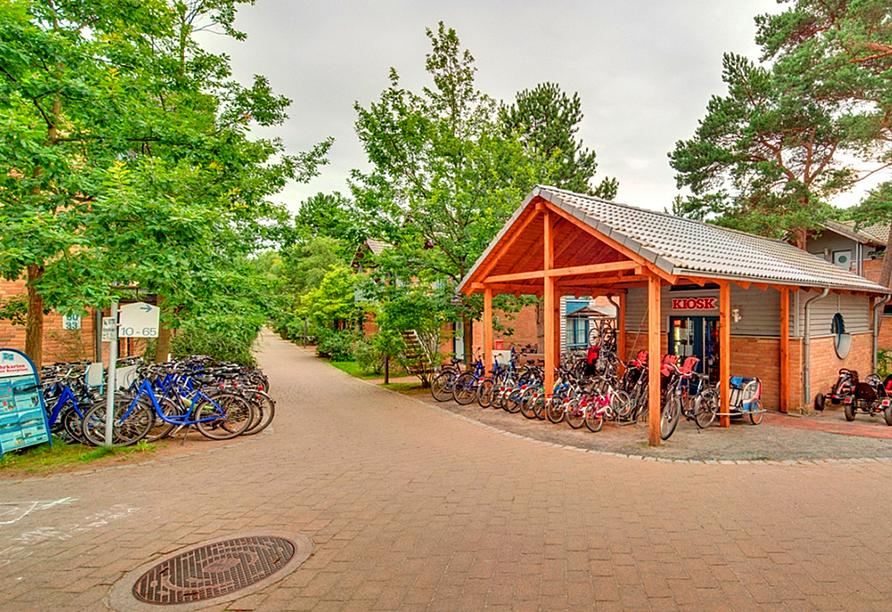 Leihen Sie sich ein Fahrrad aus, um die Region zu erkunden.