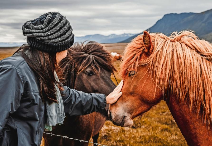 An Ihre Rundreise durch Island werden Sie sich noch lange, gerne zurückerinnern.