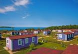 Aminess Sirena Campsite Holiday Homes, Novigrad, Istrien, Kroatien, Sirena Premium Village