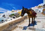 Fira liegt auf der Caldera und ist entweder zu Fuß, auf den Rücken von Eseln oder mit einer Seilbahn zu erreichen.