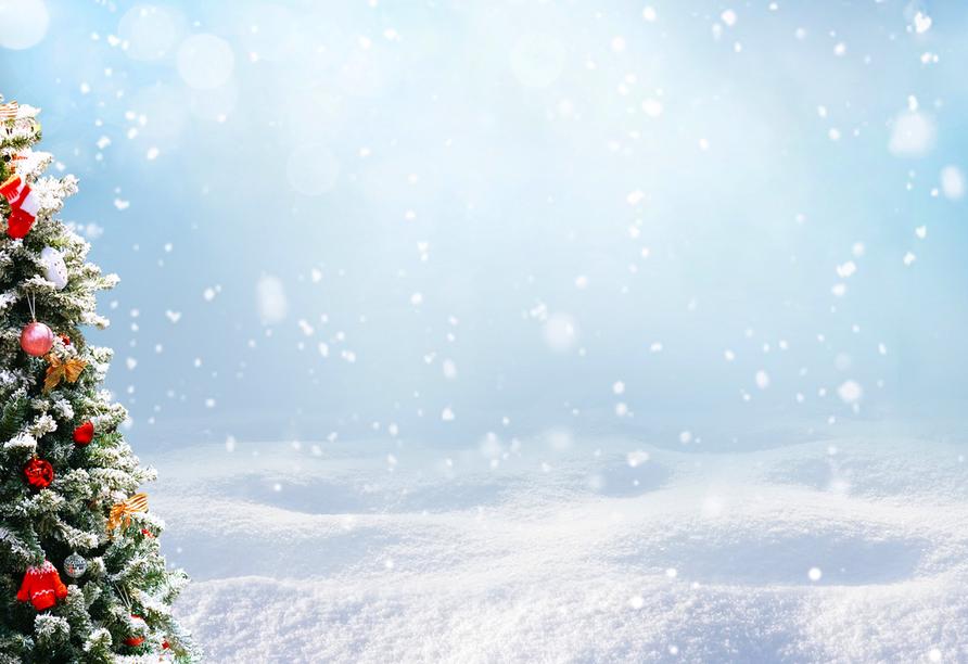 Hotel Trofana Wellness & Spa in Misdroy, Weihnachten