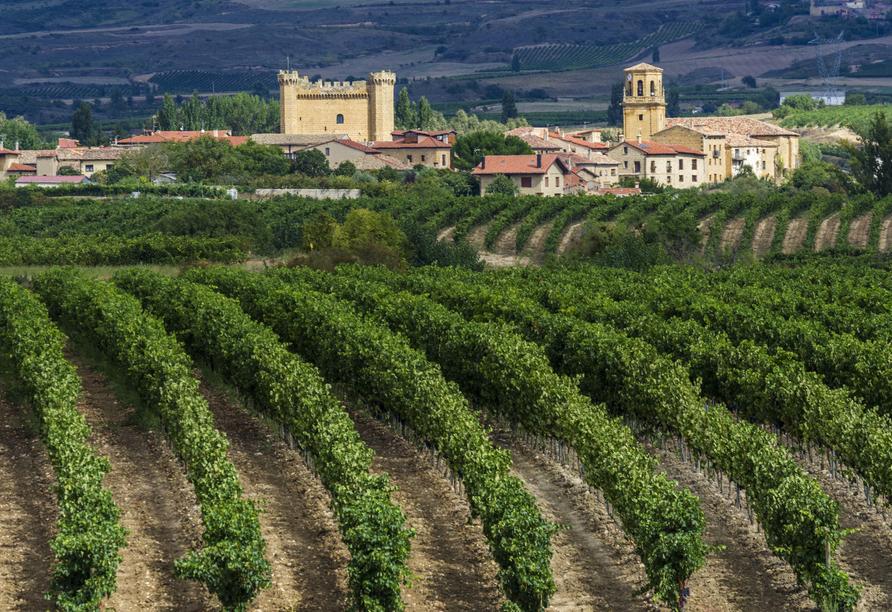 Rioja ist eine der traditionsreichsten und besten Weinregionen Spaniens.