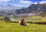 Lassen Sie sich von der traumhaften Natur des Picos de Europa Nationalparks in den Bann ziehen.