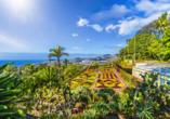 Der wunderschöne Botanische Garten von Funchal begeistert mit prächtigen Pflanzen.