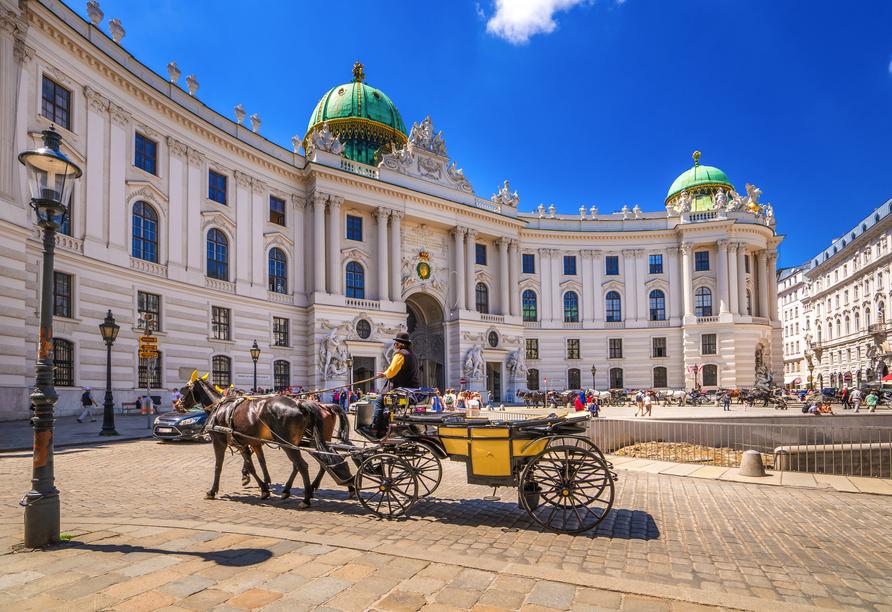 MS VistaFidelio, Wien