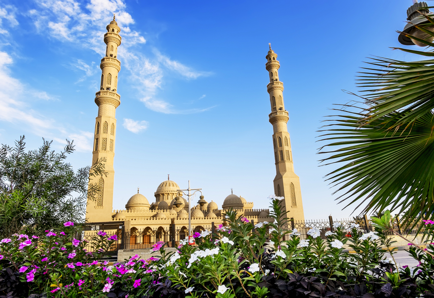 Nil Highlights & Badurlaub in Hurghada, Hurghada
