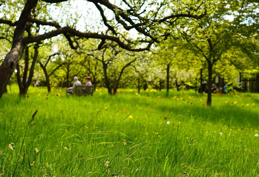 """Sommertag in der """"Grünen Oase"""" Berlins, dem Britzer Garten."""