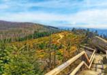 Atemberaubende Aussichten erwarten Sie im Bayerischen Wald.