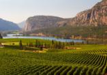 Kanadas Highlights von Ost nach West, Okanagan-Tal