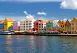 Costa Fascinosa, Curacao